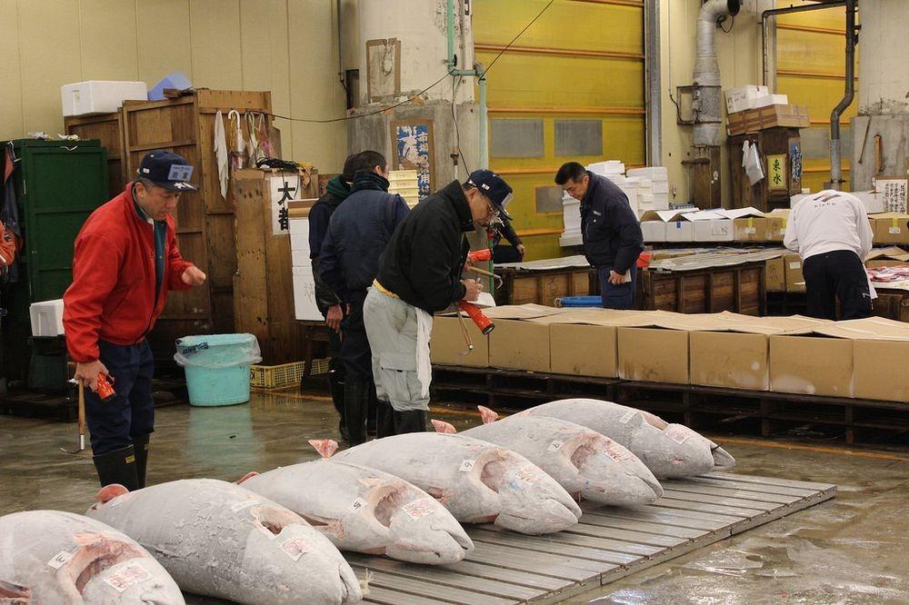 tsukiji-fish-market-132