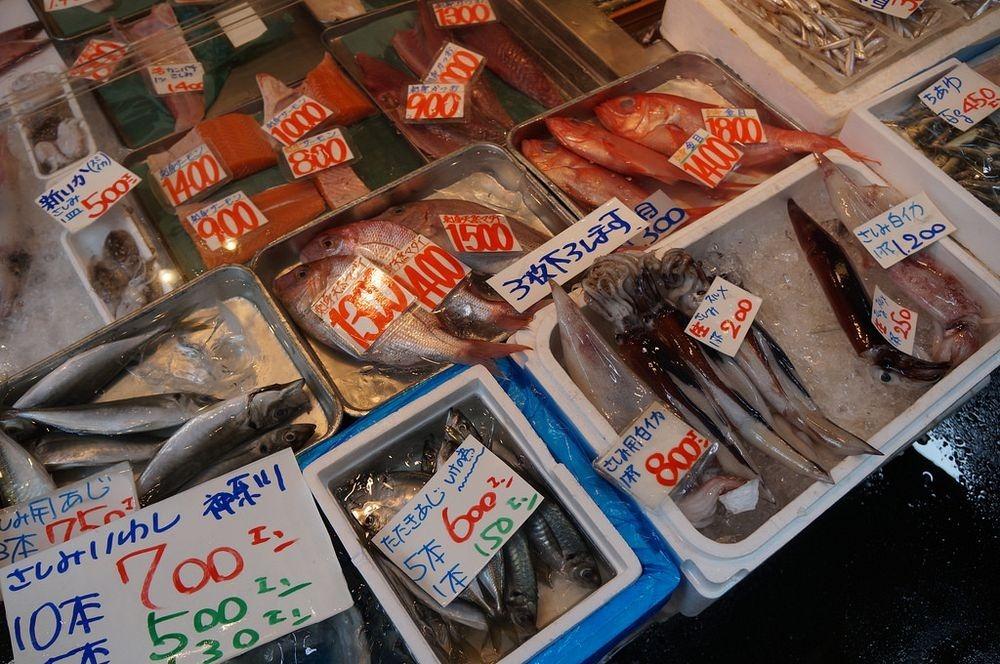 tsukiji-fish-market-172