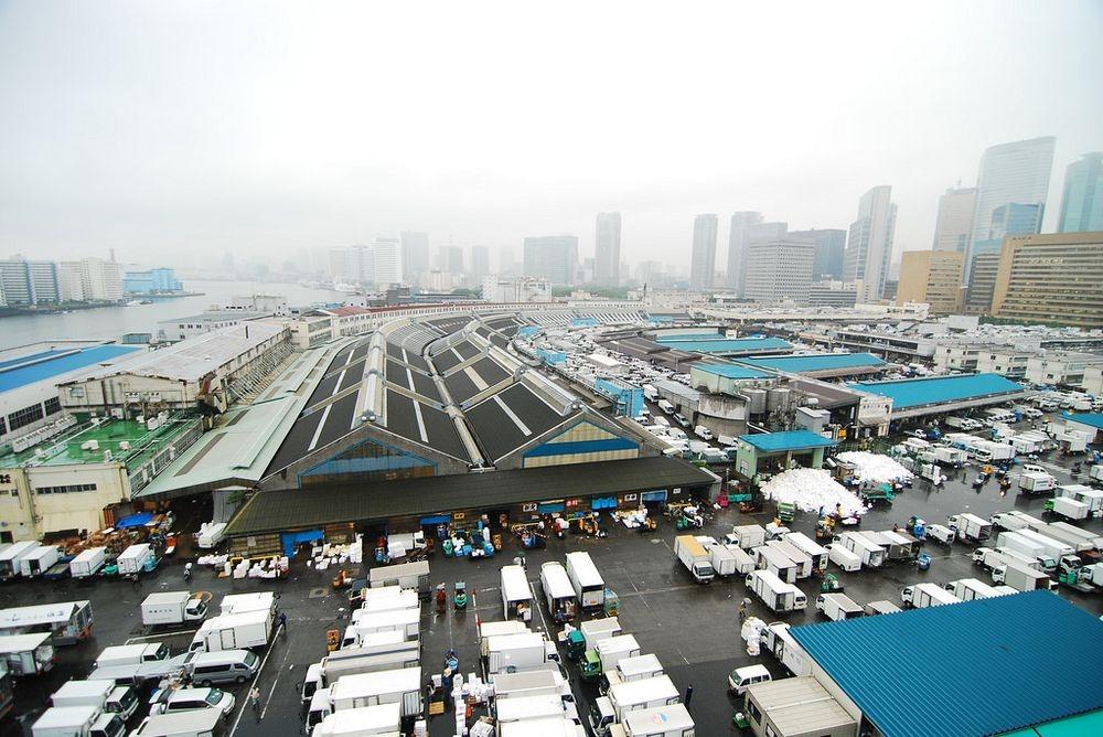 tsukiji-fish-market-46