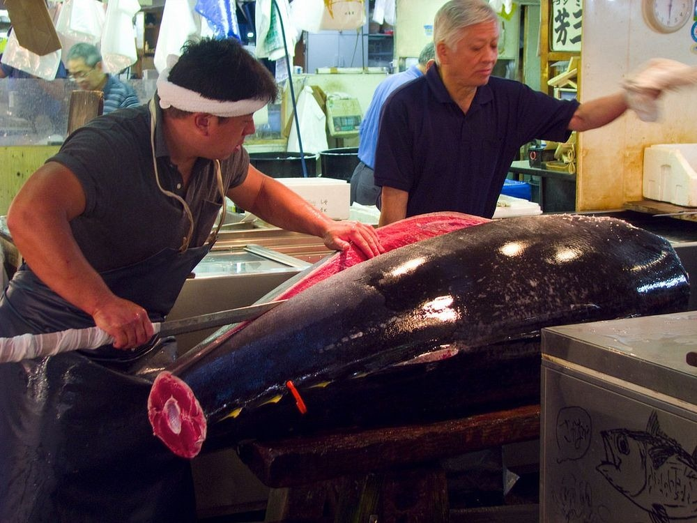 tsukiji-fish-market-52