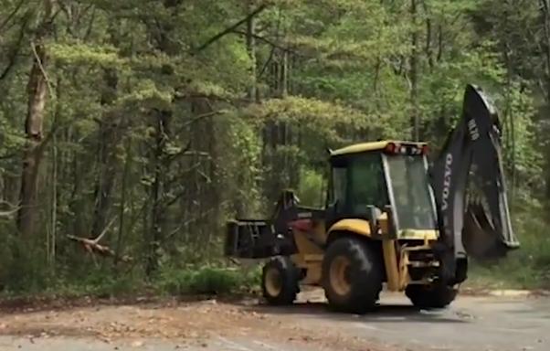 Megkoccantotta a fát a traktor, ami onnan lejött, attól milliók sikítanak fel – videó