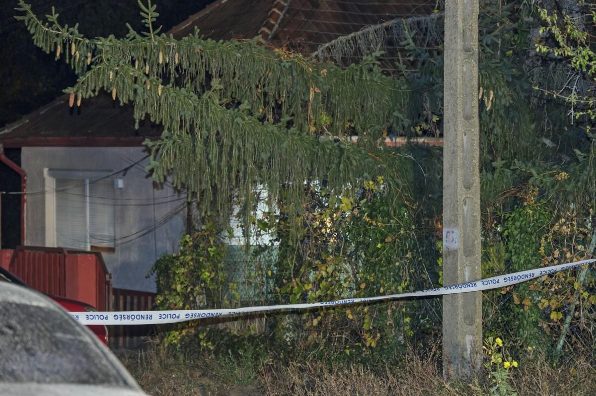 Családi ház Sülysápon, ahol holtan találtak egy négy hónapos gyermeket 2018. október 26-án este. Fotó: MTI/Lakatos Péter